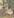 The Star of the Ballet by Edward Degas