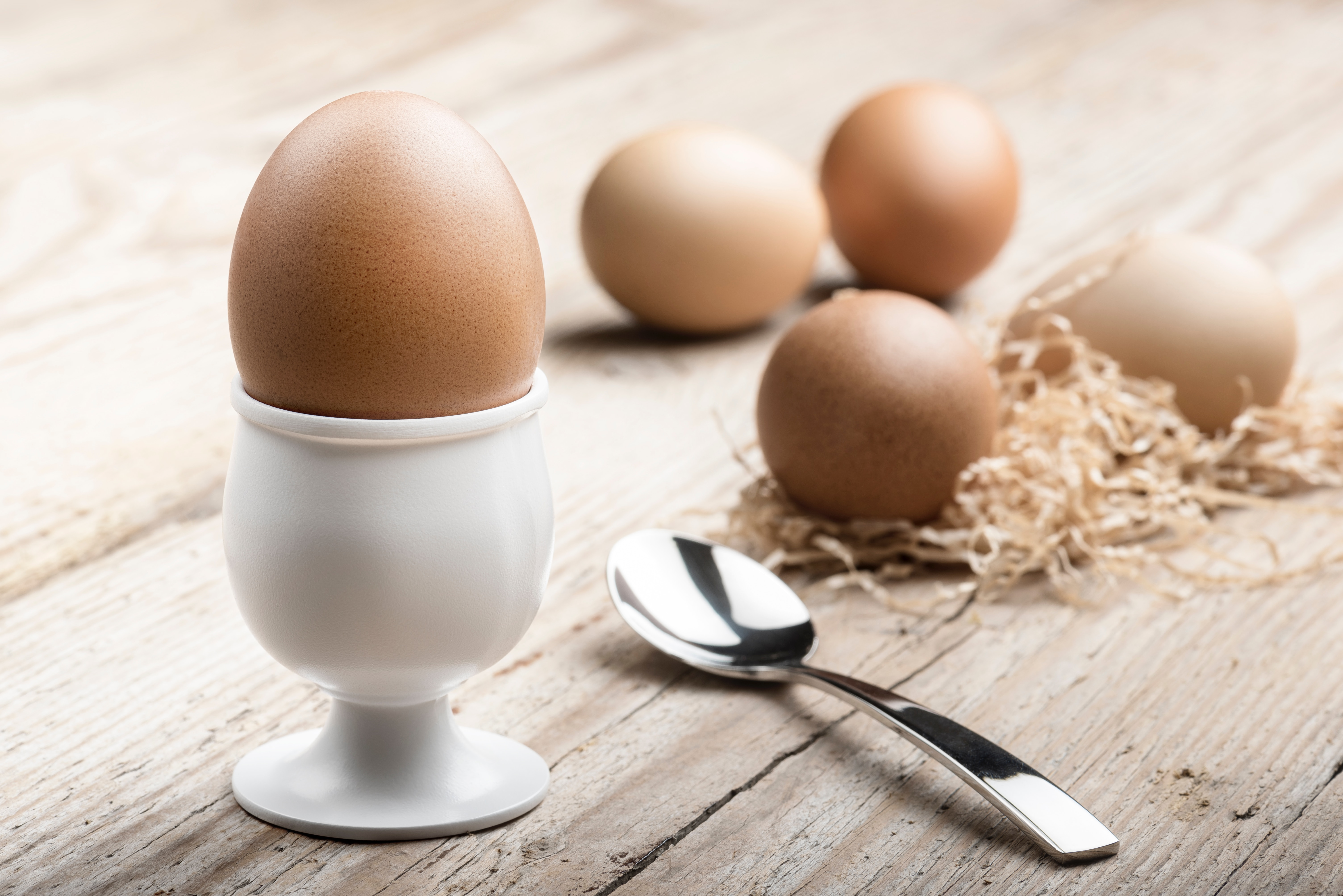 Eggs in any Form is Perfect for Breakfast